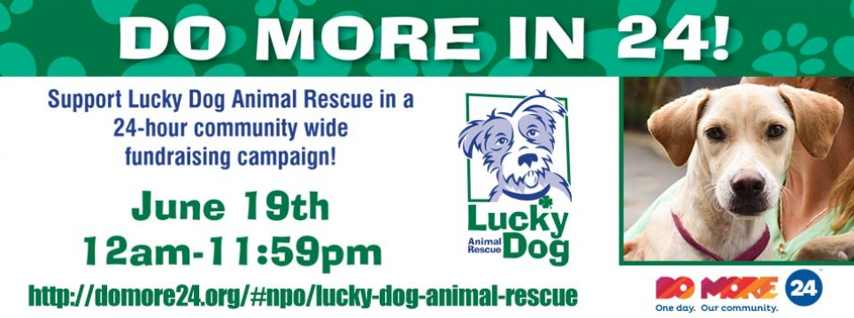 Lucky Dog Animal Rescue Joins Do More 24 on June 19th