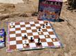Garry Kasparov, IBM Deep Blue, Immortal Chess Game, Veselin Topalov