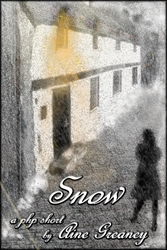 """Snow"" a short story by Aine Greaney"