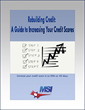 MSI Credit Solutions Releases E-Book