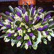 Mystery - a luxury flower arrangement available for same day flower delivery London and UK next day flower delivery.
