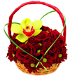 Designed by florists London at Flowers24hours.co.uk. Flowers delivery London by flower shops in London – Flowers24hours.co.uk. Flower delivery in London - same day flower delivery London and next day flower delivery London uk - Flower shop London