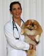 PetPace Pet Health Monitor for Dogs and Cats with Vet