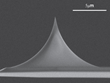 NANOSENSORS Introduces Uniqprobes  – Drift-reduced, Uniform-quality AFM Probes for Biology and Life Science Applications