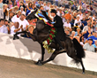 July 12th Horse Show to Help Youth Town Battle Addictions