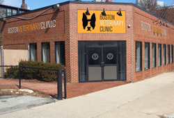 Boston_Veterinary_Clinic