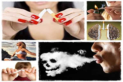 Lung Detoxification Review Introduces A Secret To Remove All The Toxins Out Of Their Lungs – hynguyenblog.com
