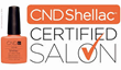 CND Serves True Envy Orlando's Pro Nail Salon with a Certification