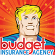 Budget Insurance Agency, Inc.  Reveals Fresh Website