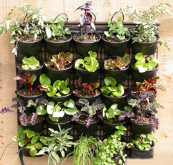Free Vertical Farm starter kit for Non-Profits