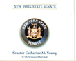 New York State Senate