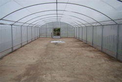 Insect Screens Greenhouses
