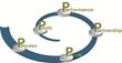 Kepner-Tregoe, Inc. Introduces Targeted Performance Improvement to...