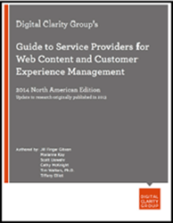 Digital Clarity Group's Guide to Service Providers for Web Content and Customer Experience Management