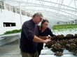 Ozark All Seasons Farm Expands, Purchasing Additional Hydroponics...