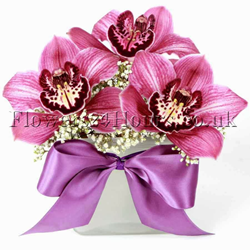 Lady Love orchid flower delivery UK. Gift shop Flowers24hours provides top quality floral design and orchid flower delivery same day in London and next day in the UK. Flower gifts