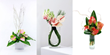 UK flowers Anthurium plants Anthurium flowers an Anthurium flower plants delivery UK London by top UK florists and same day flowers delivery