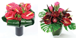 UK flowers delivery. Anthurium plants Anthurium flowers an Anthurium flower plants delivery UK London by top UK florists and same day flowers