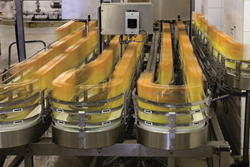 Learn how to improve operational efficiency in the food or beverage manufacturing process in a new webinar from METTLER TOLEDO.