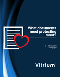 What Documents Need Protecting Most?