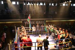 The boxers in the ring