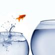 Merchant Cash Advance Business Expansion, Business Capital Loans