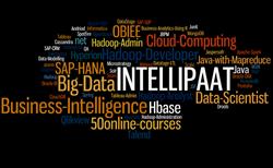Intellipaat courses