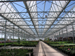 Meet RBI, Manufacturer of Commercial Greenhouses, at Cultivate 14