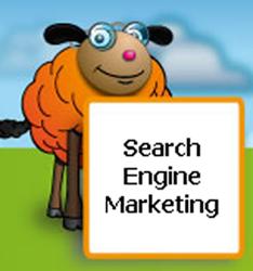 Graphic used to promote Vizcom's SEO service