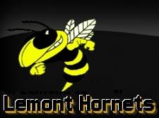 Lemont Hornets - Image