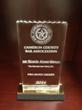 Cameron County Bar Association Pro-Bono Award