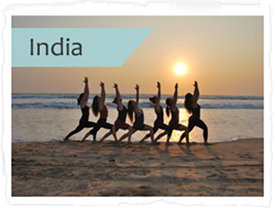yoga teacher training India 2014