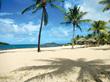 Tamarind Reef Resort - St. Croix