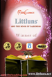 Award-Winning Fantasy Novel Littluns: And the Book of Darkness Now...