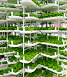Urban Produce Opens First Patented Vertical Growing Unit in Irvine, CA
