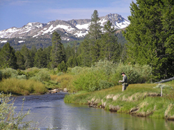 Fishing in the Eldorado National Forest