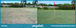 Vegalab's Newest Product Nematode Control Proves to  Be a Natural...