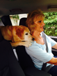 Kathy Taylor and Canine Companions for Independence Hearing Dog Janet driving to a client site as part of Kathy's job with CenturyLink.
