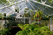 BC Greenhouses Offers Tips on how to cool your greenhouse this summer