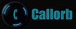 Callorb Technologies, L.L.C.