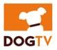DOGTV Offers Samsung Smart TV Users a Complimentary Month of DOGTV...
