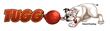 Tuggo Logo