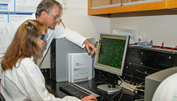 Lawrence Livermore Microbial Detection Array