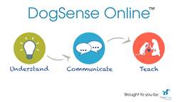 DogSense Online Kickstarter Project