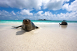 Adventure Life Offers Discounts on Galapagos Cruises