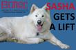 Sasha Gets a Butler Mobility Inclined Platform Lift