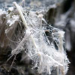 Occupational Medicine Specialist Blames Faulty Science for Continued Spread of Mesothelioma, According to Surviving Mesothelioma