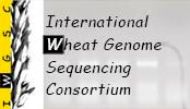 IWGSC logo
