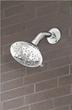 Florin 5 Functon Shower Head D460035 From Danze