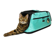 A special edition Sleepypod Air pet carrier in Robin Egg blue is available for a limited time.